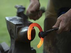 hot shoeing - our farrier used to do this in the backyard at home for my horses