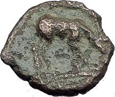 EPHESOS in IONIA 280BC Authentic Ancient Greek Coin BEE Stag & Quiver i63175 https://noahweigall.wordpress.com/2017/08/02/ephesos-in-ionia-280bc-authentic-ancient-greek-coin-bee-stag-quiver-i63175/