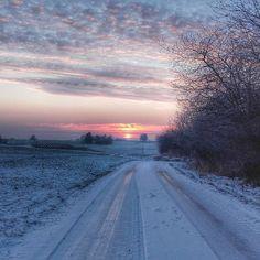 #winteriscomming #winterishere #winter #zima #śnieg #mróz #snow #freeze #cold #lubelszczyzna #Polska #Poland #sun #słońce #sunrise #wschód #wschódsłońca #east #road #droga #leśnictwo @lasy_panstwowe #forrestry #forrest #drzewa #tree #drogadopracy #colors