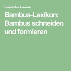 Bambus-Lexikon: Bambus schneiden und formieren