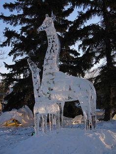 Giraffe ice sculpture from Kerry Williams. Giraffe Art, Cute Giraffe, Baby Giraffes, Elephant Baby, Giraffe Pictures, Animal Pictures, Giraffe Family, Ice Art, Snow Sculptures