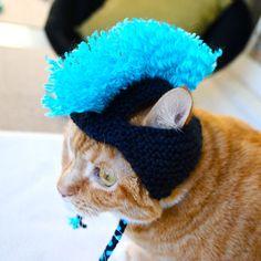 Mohawk Cat Hat  Navy and Aqua by bitchknits on Etsy, $13.00