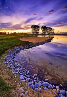 """ Stones, Trees and Bunker in Clearwater, New Zealand """