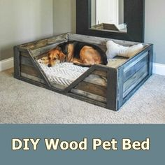 DIY Wood Pet Bed - Homesteading  - The Homestead Survival .Com