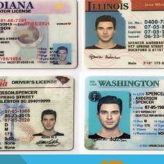 63 Best Buy Fake ids and drivers license images in 2019