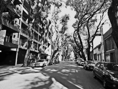 https://flic.kr/s/aHskB8DHKh | Calle Guatemala between Thames y Uriarte, Palermo Soho, Buenos Aires | Calle Guatemala between Thames y Uriarte, Palermo Soho, Buenos Aires