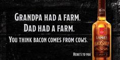 Lamb's Black Sheep: Bacon