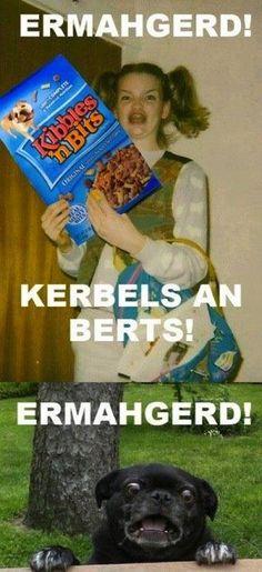 Ermahgerd Kibbles n Bits | Funny Memes
