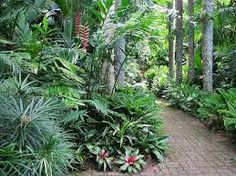 Image result for tropical landscaping with small hidden pool
