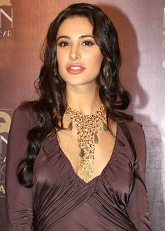 Nargis Fakhri brushing her Hindi!