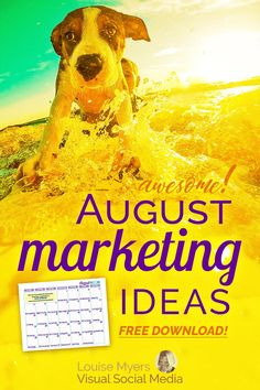 Need August marketing ideas? Don't take the month off – use these ingenious ideas! Keep active, employ automation, and give your audience what they want. Facebook Marketing, Content Marketing, Online Marketing, Social Media Marketing, Marketing Ideas, Marketing Strategies, Inspirational Quotes For Entrepreneurs, Instagram Marketing Tips, Pinterest For Business