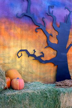 lances cool fall backdrop | my husband made this backdrop an… | Flickr