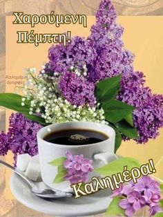 Coffee Time, Good Morning, Herbs, Tableware, Plants, Quotes, Frases, Polish, Pictures