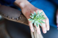Stunning living succulent cocktail ring. by PassionflowerToWear, $28.00