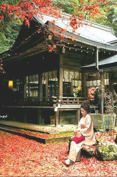Japón Monte de Kasuga-taisha Shrine Santuario Sintoist Ciudad de Nara, fundado en 768, por la familia Fujiwara