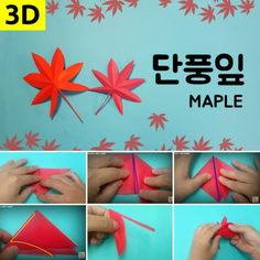 [3D종이접기]단풍잎종이접기_단풍잎접기 : 네이버 블로그 Kids Origami, Origami Box, Diy And Crafts, Arts And Crafts, Paper Crafts, Korean Crafts, Art Activities, Paper Mache, Classroom Decor