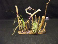 plantes sans terre, tillandsia, décoration florale, décoration végétale, filles de l'air, les jardins nomades