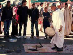 P1010847_Marrakesh