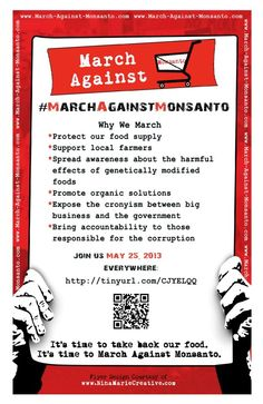If you're against Genetically Modified Foods (GMOs) and the Mega chemical, seed and food corporation Monsanto, please support the March Against Monsanto on Saturday, May 25th, 2013. Read more in the article.