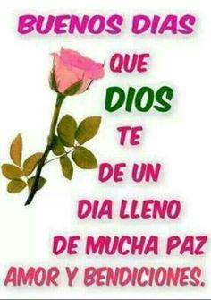 143 Best Buenos dias images | Good morning, Good morning ...