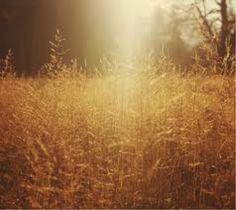 A haze with soft touches of browns and golds.