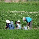 Bolivia country information  #Bolivia #santacruzdelasierra de la Sierra #Quechua  #Aymara  #Guaraní Bolivia, Country Information, Outdoor Decor