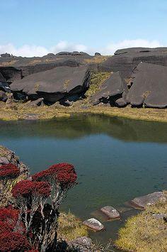 """O deslumbrante Monte Roraima - O vale da Catedral, as """"banheiras"""" Jacuzi, o Fosso, a Ventana e a vista do Kukenan também cativam."""