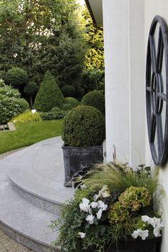 Danuta Młoźniak '100 most beautiful gardens of the world'