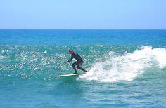 eddie vedder surfing