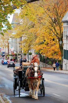 Ottawa, Canada Visit Canada, O Canada, Canada Travel, Ottawa Canada, Ottawa Ontario, Work With Animals, The Province, Homeland, Vancouver
