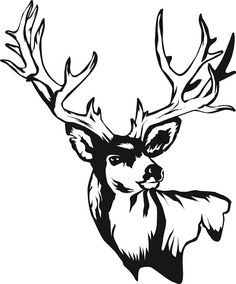 this is best deer skull clip art 14201 deer skull drawing free rh pinterest com free deer skull clipart deer skull with flowers clipart