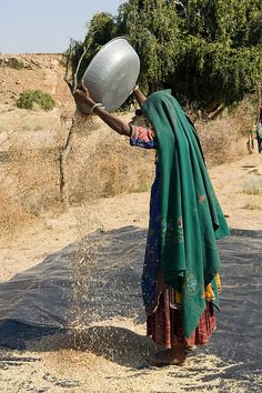 Separating Chaff From Seeds , India
