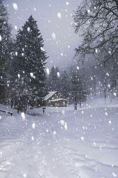 Beautiful nature – wnderlst: place unknown ↝ Alfredo Buzzone Source by Winter Szenen, I Love Winter, Winter Magic, Winter White, Hirsch Illustration, I Love Snow, Winter's Tale, Snowy Day, Snow Scenes