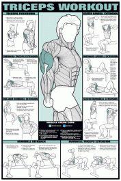 nfc6-triceps