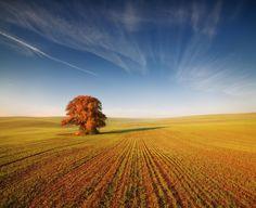 Autumn Moravia - :)
