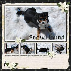 Snow Hound dog scrapbook layout