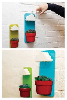 Cutest Indoor Gardening. This could be cat-proof!