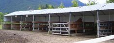 Horse Shelter Stalls Get your horses protection. #horseshelterstalls #horseshelter #shelter