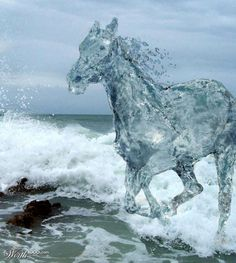 Reallly creative manipulation, cool how they made the horse part of the sea, lots of deatil in the horse shows up well. Clear bright mood