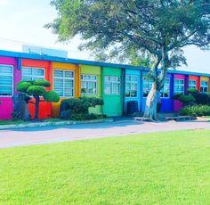 韓国で一番可愛い♡虹色の小学校【エウォル小学校】