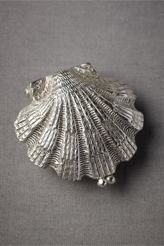 Anthropologie Weddings: (squeal!) Silvery Seashell Ring Holder in Décor Keepsakes at BHLDN