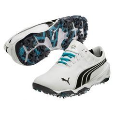 puma-biofusion-golf-shoes-for-1761big.jpg (390×390)