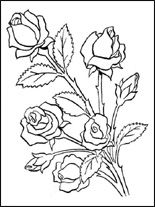 Flores   Desenhos para colorir