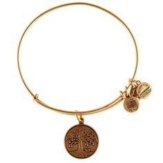 Hope | Conservation | Growth     The Tree of Life represents strong roots, consistent growth, and fruition. An acknowledgment of our commitment to nurture, love, and preserve the beauty of nature, wearing this charm evokes the etern