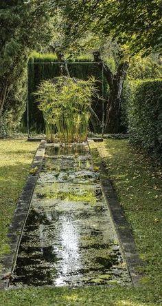 Bassin zen dans le jardin d'un mas provençal.