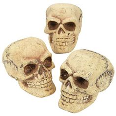 Foam Skulls   http://www.discountpartysupplies.com/theme-parties/day-of-the-dead-decorations/foam-skulls.html
