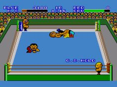 Pro Wrestling, from the Sega Master System! If you understand this, the you are as old as I am. I played this non-stop for like a years!