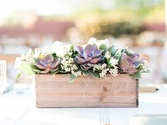 Succulents in wooden box, succulent table centerpiece, succulent centerpiece, wooden box centerpiece | Rachel Solomon Photography Blog | Sara and Corey – Scottsdale Private Estate Wedding | http://blog.rachel-solomon.com