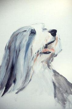 Oil Paint bearded collie