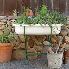 Plant a vintage bathtub w/herbs or salad greens.